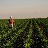 Koronavírus: ingyen hitellel segítenek a bajba jutott gazdáknak
