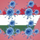 Újabb tíz koronavírusos beteg halt meg Magyarországon