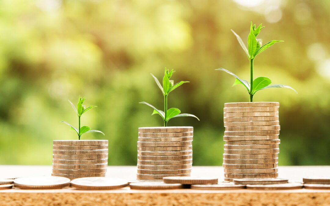 Zöldülő kötvénypiac – Zöld pénzügyi jelentés az MNB-től