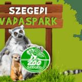 Zoopedagógiai sorozatot indított a világhálón a Szegedi Vadaspark