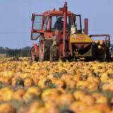 Így kérhetnek támogatást az agrár- és élelmiszeripari vállalkozások
