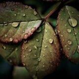 A hétvégén is várható eső, de napsütés is lesz