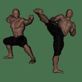 Kung Fu edzőtábor