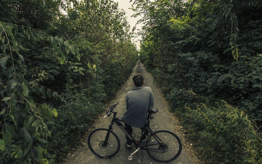 Kerékpárral a Zsámbéki-medencében