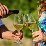 Hatalmas sikert értek el magyar borászok Bordeaux-ban, a világ legrangosabb borminősítő eseményén