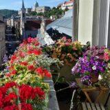 Megvannak a Virágos Magyarország verseny győztesei