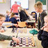 Ingyenes online sakksuli indul iskoláknak és kluboknak