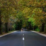 Átadták a Biatorbágy-Etyek-Alcsútdoboz összekötő út felújított szakaszát