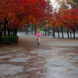 Rengeteg eső jön, erős széllökések is lesznek: riasztást adtak ki a fél országra