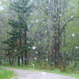 Meteorológiai szolgálat: északkeleten a hegyekben havas eső, hó is lehet