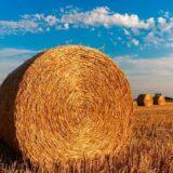 Nőtt az ökológiai gazdálkodásba bevont területek nagysága az országban