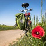Kerékpáros tervek