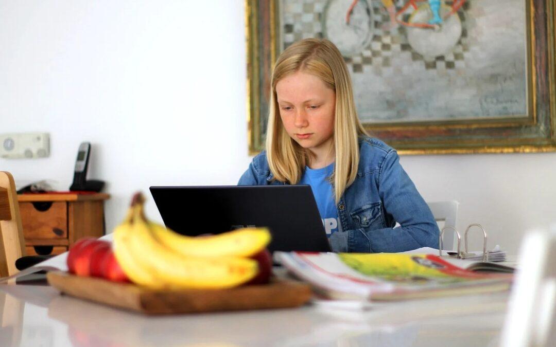 Bővült a Nébih oktatási programja