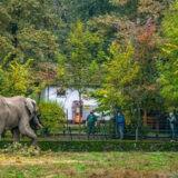 Sikeres szezont zárt a Nyíregyházi Állatpark