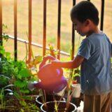 A családoknak kiemelt szerepük van a fenntartható fejlődésben