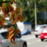 NNK: a légszennyezés mindenkire veszélyes lehet