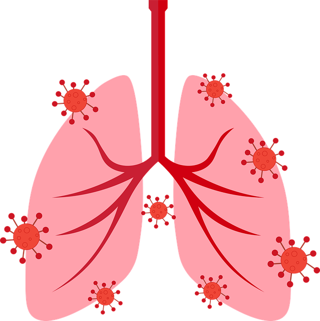 Módszertani ajánlást készített a pulmonológiai intézet a betegek utógondozására