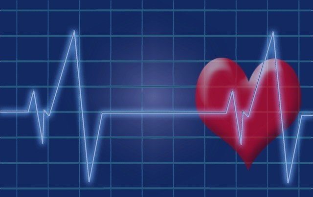 A hirtelen szívhalál is téma lesz a Semmelweis Egészségnapok következő rendezvényén