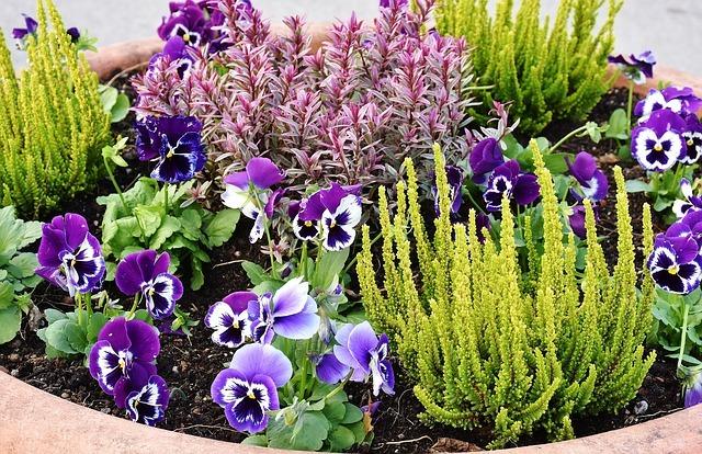 Lakossági virágpiac Biatorbágyon