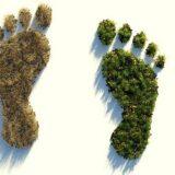 Az MNB az ökológiai lábnyom mérséklésére hívja fel a figyelmet